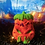 Thumbnail: Pu-Key Pumpkin Plastic Bath Bomb Mold