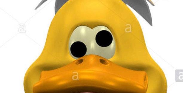 Duck Plastic Bath Bomb Mold - Two Sizes