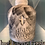 Thumbnail: Holy Water Plastic Bath Bomb Mold