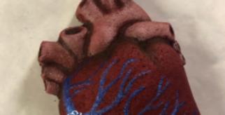 Anatomical Heart Bath Bomb Mold
