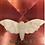 Thumbnail: Skull Moth Head Bath Bomb Mold