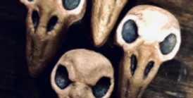 Ravens Skull Plastic Bath Bomb Mold- Large