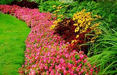 flower-small-garden-design