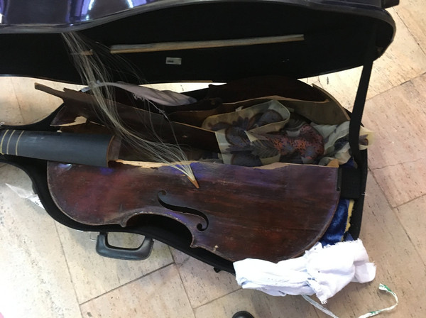 Itaalia lennufirma Alitalia hävitas viola da gamba