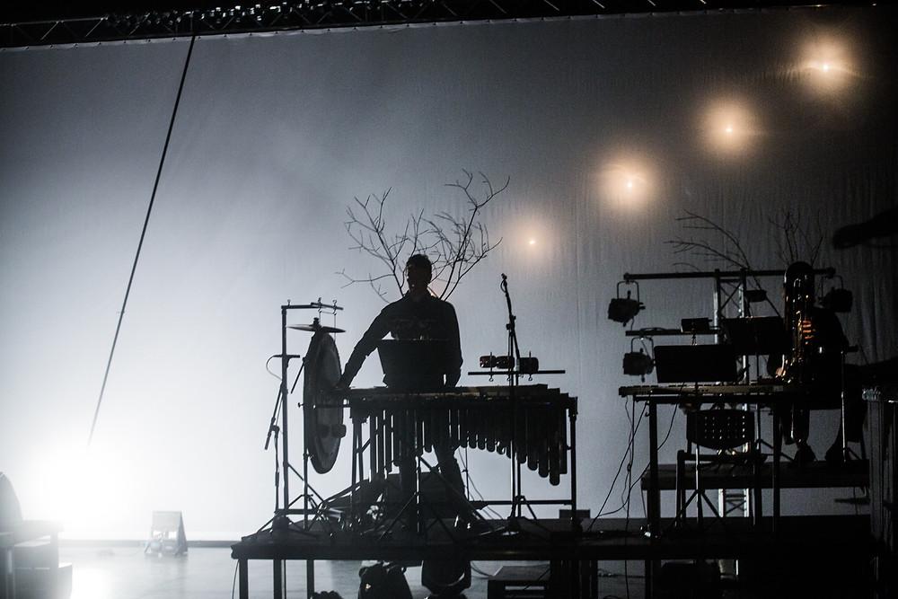 """Ardo Ran Varrese """"Käidi ja külvati pimeduse seemneid, sest valgus hakkas võrsuma"""". FOTO LEONORA PALU"""