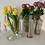 Thumbnail: Vase opaline 🌸