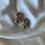 Thumbnail: 80s pearls earrings