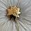 Thumbnail: Solar brooch