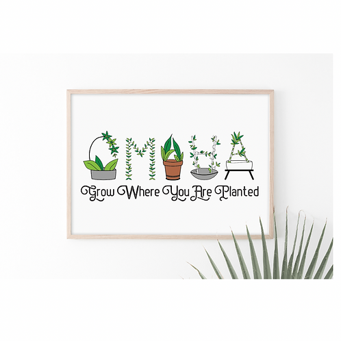 Grow Where You Are Planted Print (8 x 10)