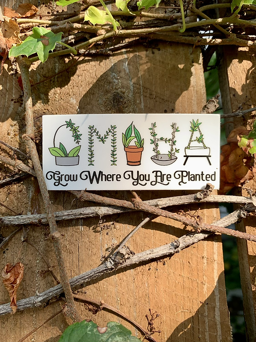 Grow Where You Are Planted Sticker