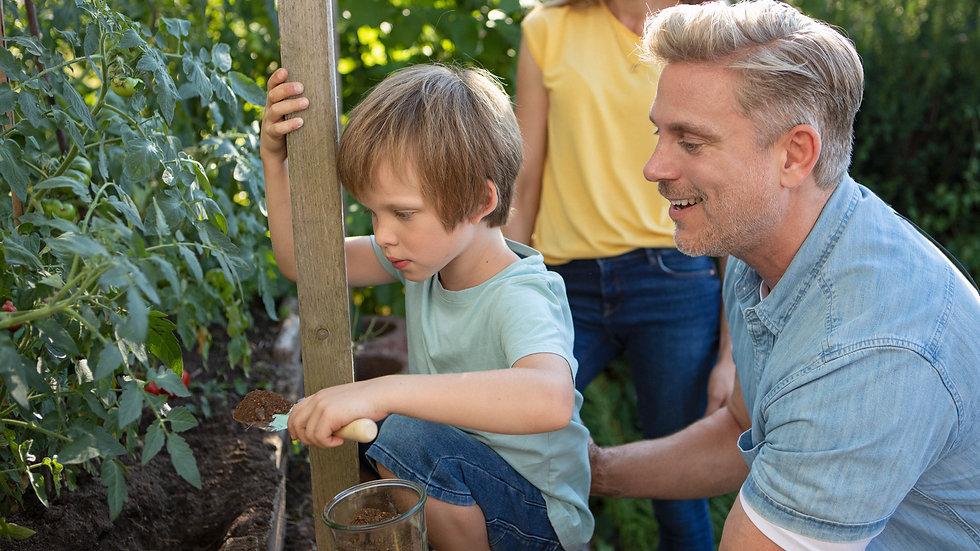 Familie gibt KALEA Kompost zu Tomatenpflanzen im Garten