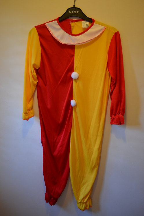 All in one Clown Costume