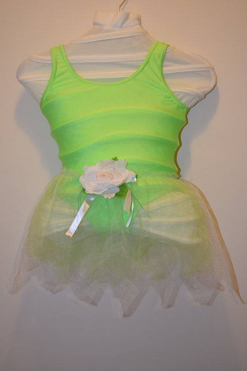 Green Leotard with Tutu Skirt, wings and headdress