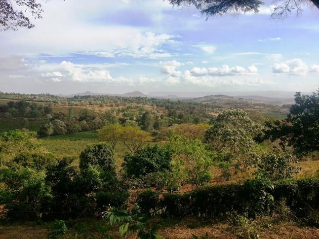 Skipping the Serengeti and finding Singida instead