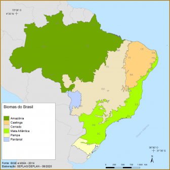 GEOGRAFIA DA REGIÃO SUL - VEGETAÇÃO