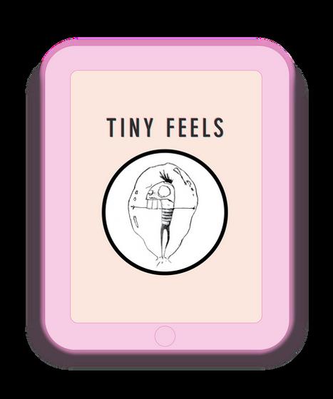 Tiny Feels Business Creation Illustration + Full  Brand Design