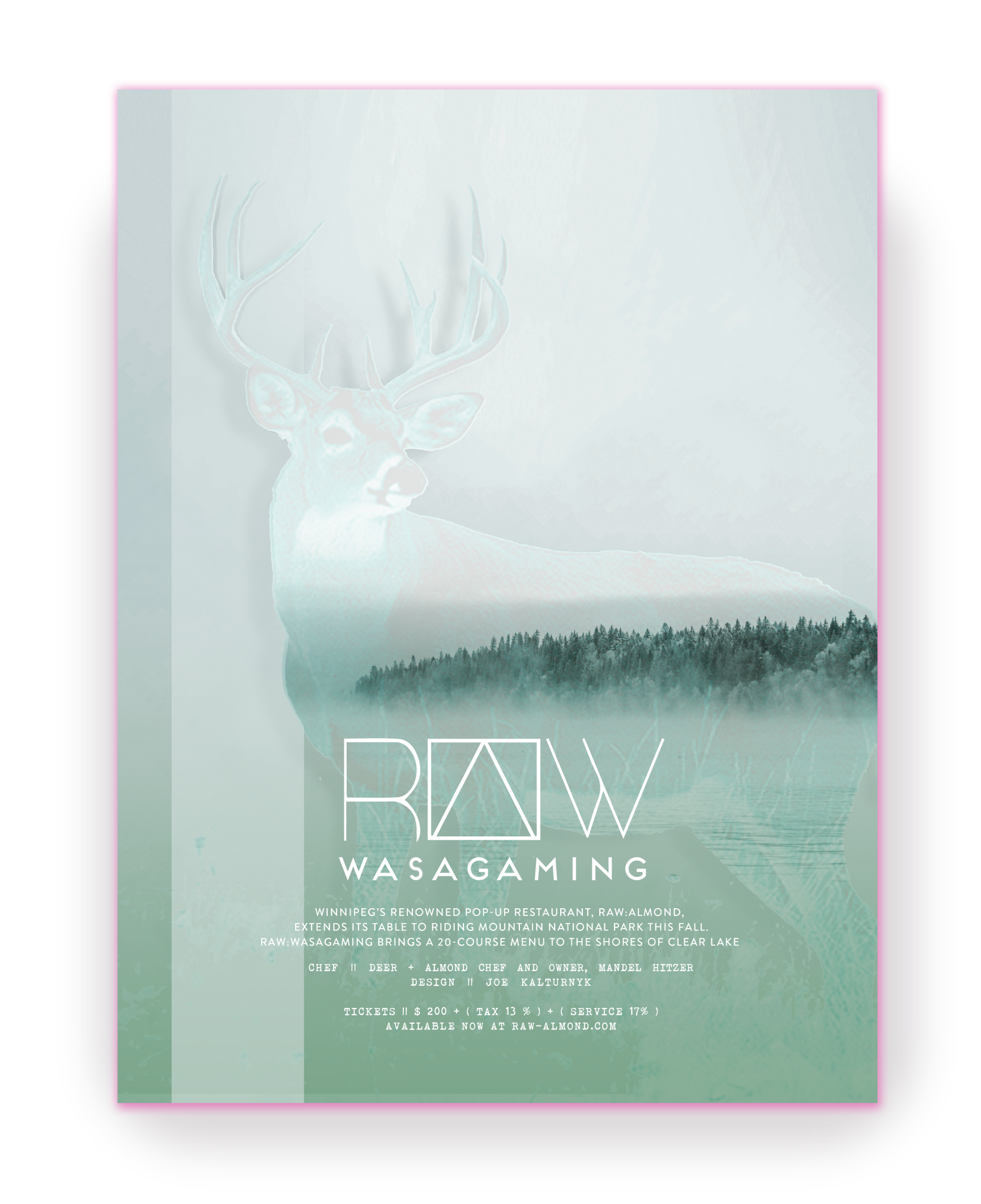 Raw Wasagaming Proposed Concept