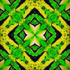 EmeraldShield.jpg