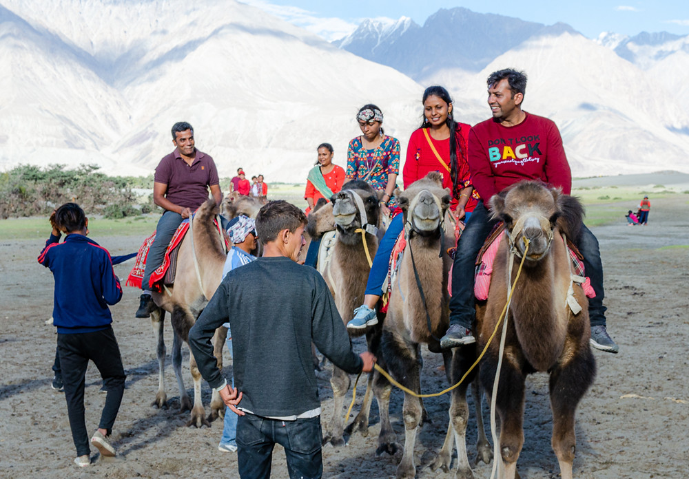 Indian tourists smile as they take Bactrian camel rides in Nubra Valley, Ladakh, India