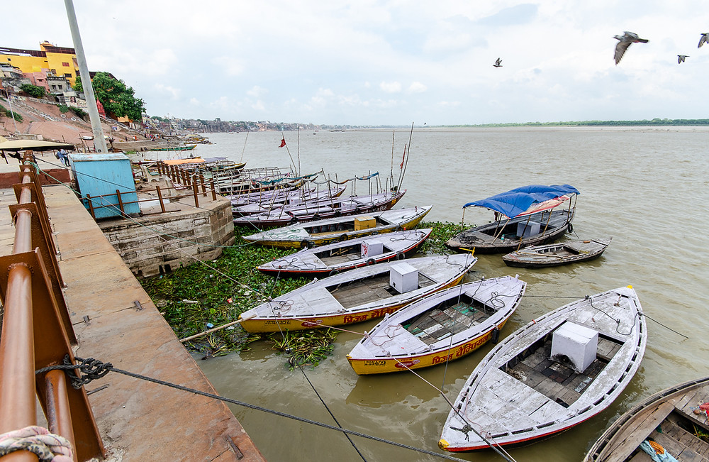 boats and pigeons in ganges river in varanasi india