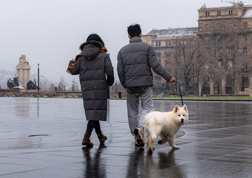 Asian couple and white puppy dog walk in an empty Budapest