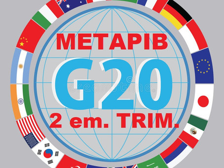 METAPIB G-20, 2em. trim.-2021