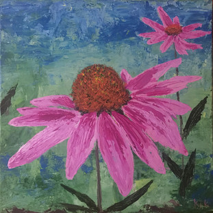 pink cone flower