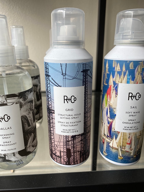 R+CO GRID - STRUCTURAL HOLD SETTING SPRAY
