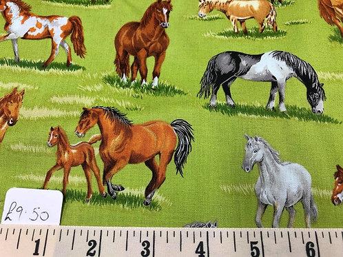 Horses - £2.37 per quarter