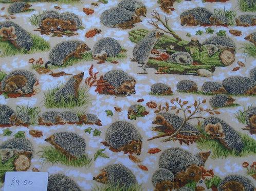 Hedgehogs - £2.37 per quarter