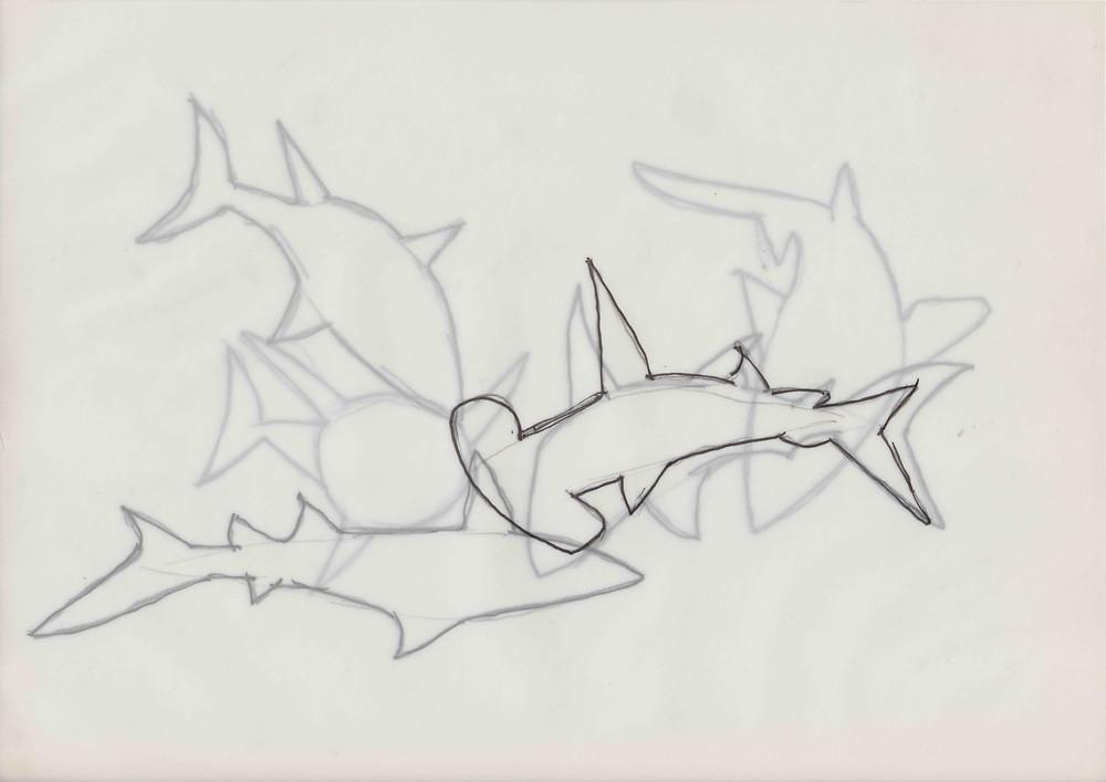 Albrecht_Sharks.jpg