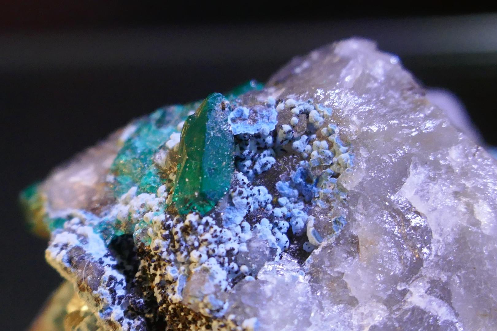 Several gemmy translucent Dioptase crystals scattered between Shattuckite andPlanchite on Quartz