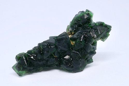 Octahedral Fluorite Tree