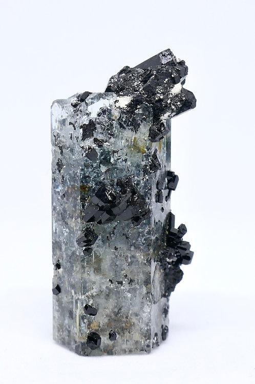 Aquamarine Crystal with Schorl Tourmaline and Feldspar