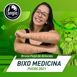 Bruna Feijo Silveira de Almeida