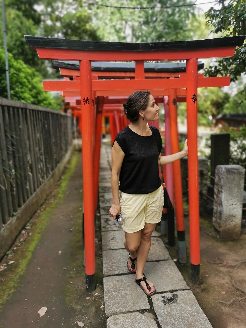 The beautiful Torii gates at the Nezu shrine. A true hidden gem