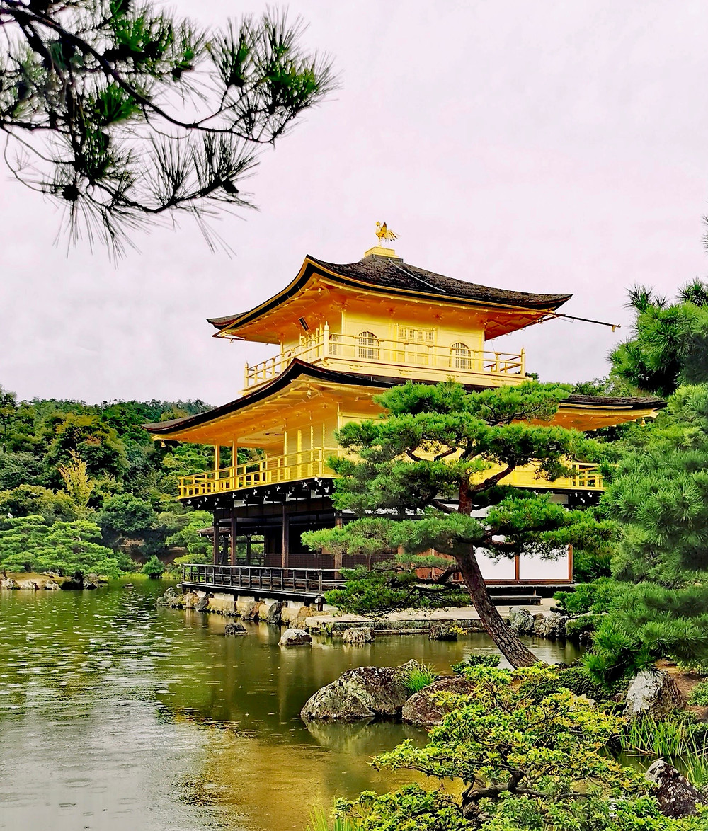 Golden Pavilion The Kinkakuji Zen Temple Kyoto
