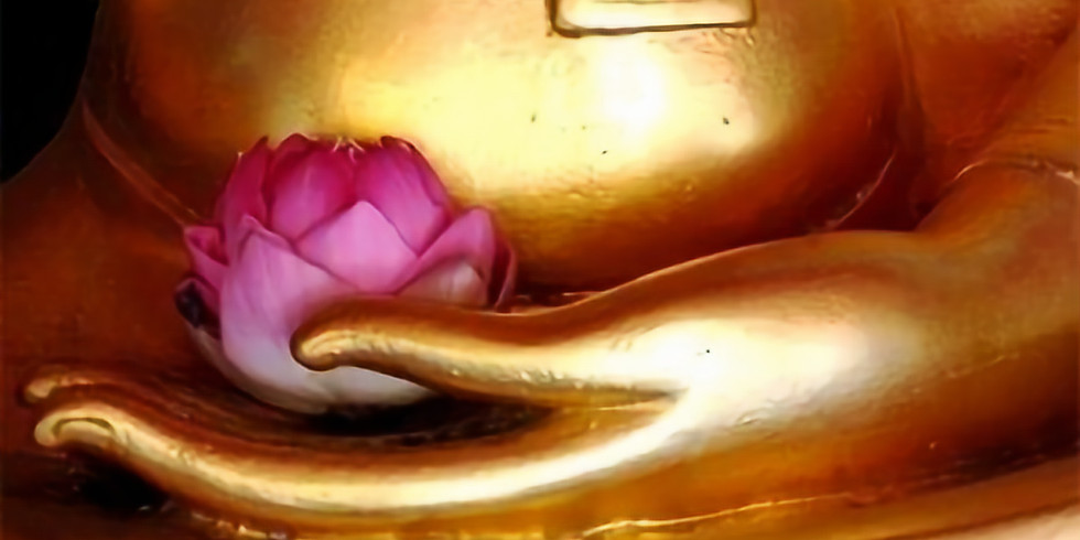 Meditation and Writing Afternoon Retreat: No Mud. No Lotus.