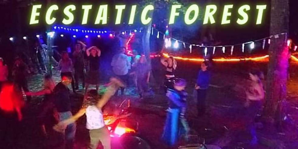 The Ecstatic Forest Abund- DANCE!!