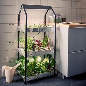 Vatodar Green WaterFarms  Aquaponics and