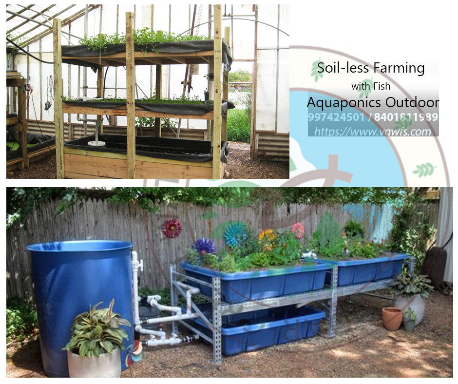 Outdoor Aquaponics
