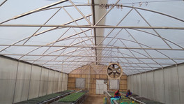 Single Loop Closed Ventilated Greenhouse