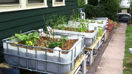 Growbed Hydroponics