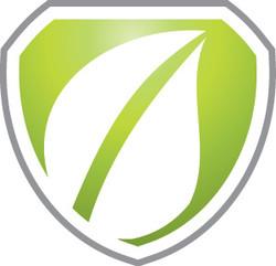 Logo File Icon