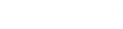 Paradigm Logo trans2.png