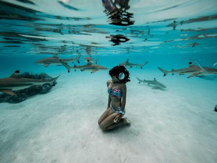 'Shark Girl' Madison Stewart