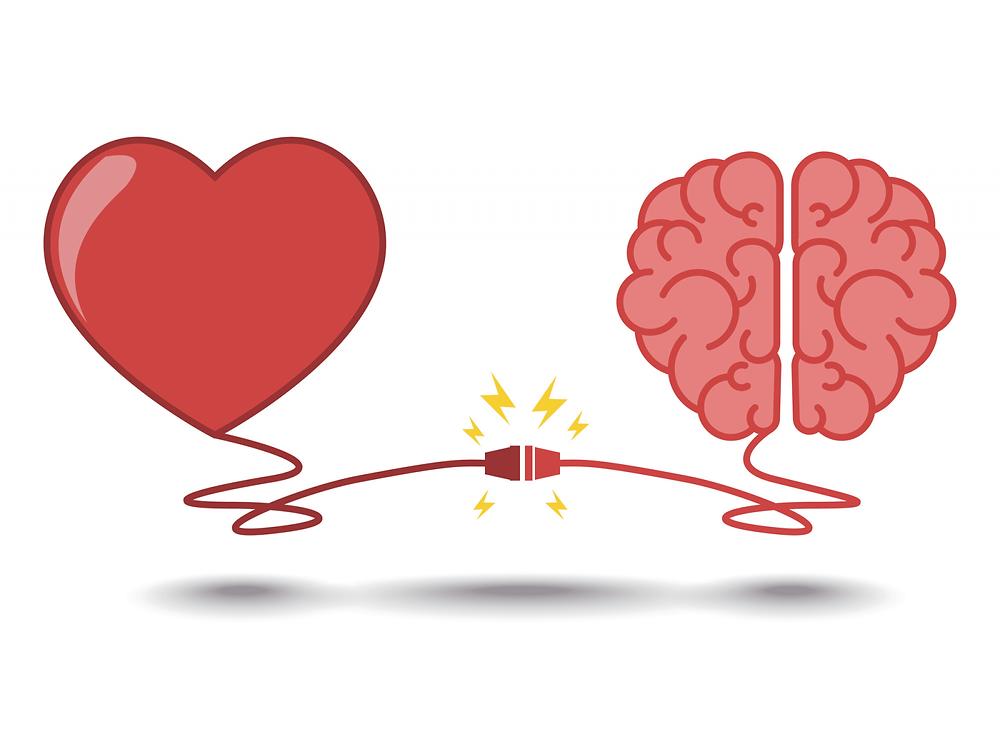 Image d'un cœur et d'un cerveau qui se connectent
