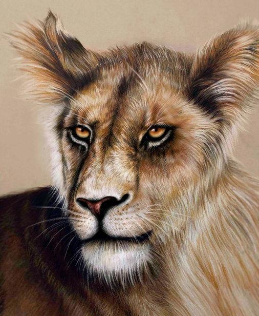 Lion by Lucia Inman Valero.jpg