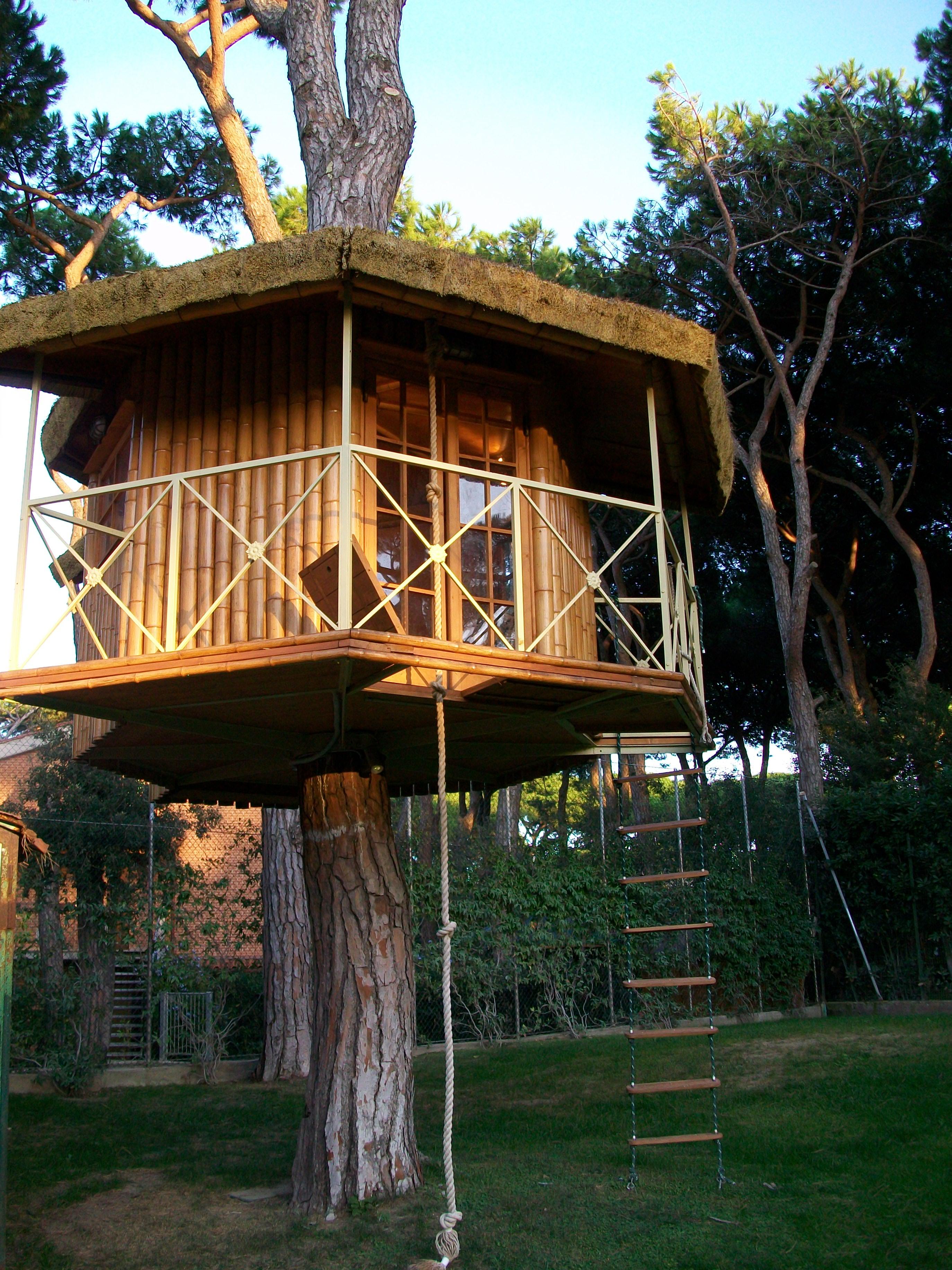 House on tree - Italy