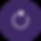 IFN_IKONER_final_process_lilla.png